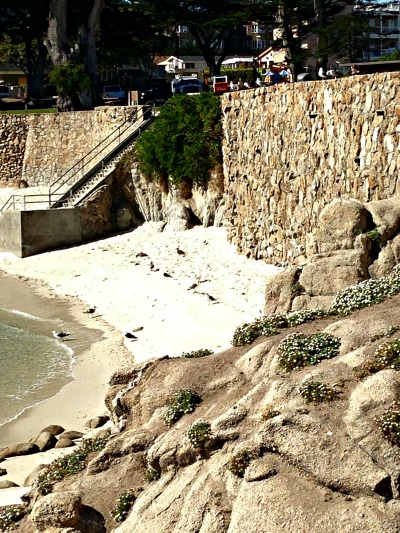 Tiny Beach At Lovers Point In Monterey