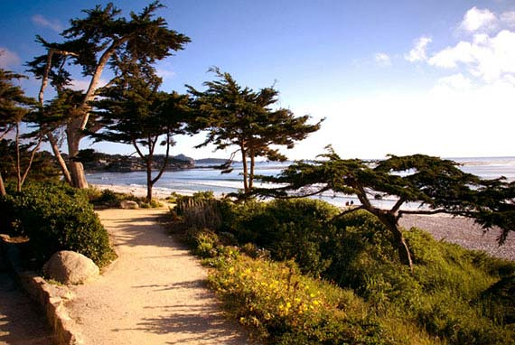 The perfect Carmel By The Sea getaway.